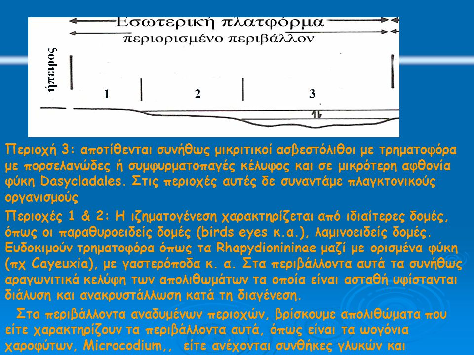 123 Περιοχή 3: αποτίθενται συνήθως μικριτικοί ασβεστόλιθοι με τρηματοφόρα με πορσελανώδες ή συμφυρματοπαγές κέλυφος και σε μικρότερη αφθονία φύκη Dasycladales.