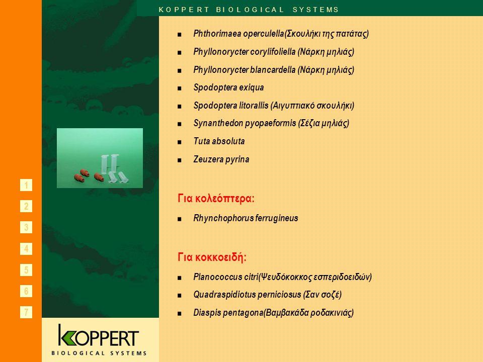 1 2 3 6 7 K O P P E R T B I O L O G I C A L S Y S T E M S 4 5 Phthorimaea operculella(Σκουλήκι της πατάτας) Phyllonorycter corylifoliella (Νάρκη μηλιά
