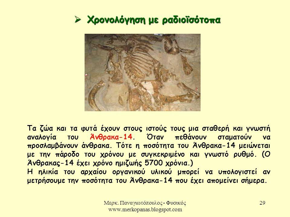 Μερκ. Παναγιωτόπουλος - Φυσικός www.merkopanas.blogspot.com 29  Χρονολόγηση με ραδιοϊσότοπα Τα ζώα και τα φυτά έχουν στους ιστούς τους μια σταθερή κα