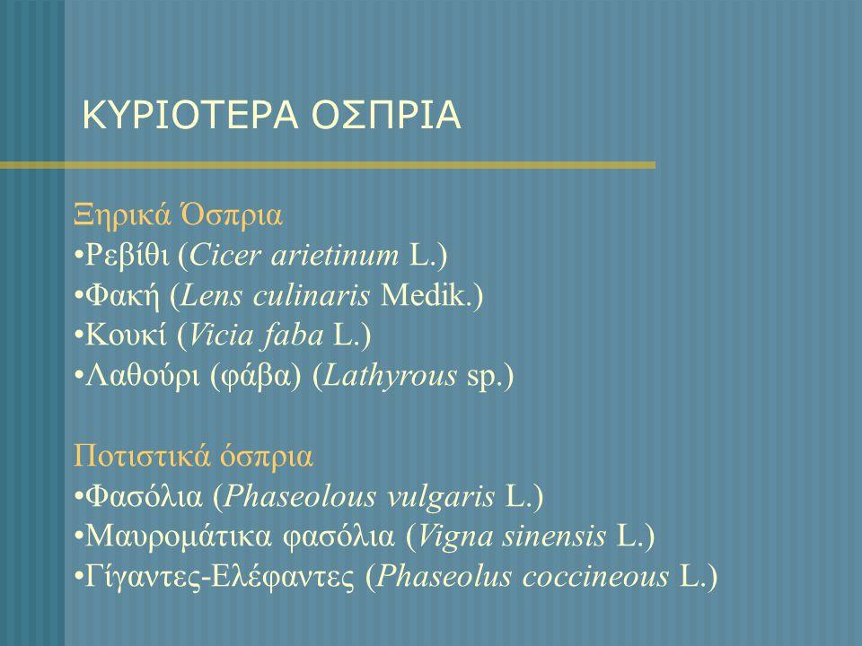 ΚΥΡΙΟΤΕΡΑ ΟΣΠΡΙΑ Ξηρικά Όσπρια •Ρεβίθι (Cicer arietinum L.) •Φακή (Lens culinaris Medik.) •Κουκί (Vicia faba L.) •Λαθούρι (φάβα) (Lathyrous sp.) Ποτισ