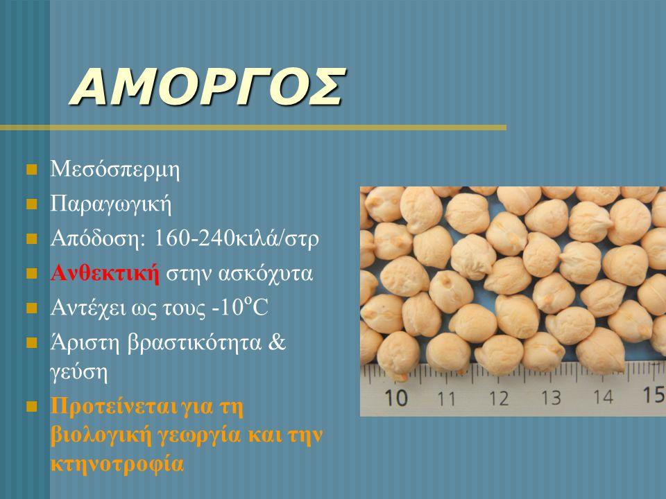 ΑΜΟΡΓΟΣ  Μεσόσπερμη  Παραγωγική  Απόδοση: 160-240κιλά/στρ  Ανθεκτική στην ασκόχυτα  Αντέχει ως τους -10 ο C  Άριστη βραστικότητα & γεύση  Προτε