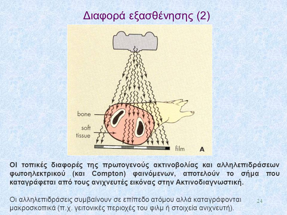 Διαφορά εξασθένησης (2) 24 ΟΙ τοπικές διαφορές της πρωτογενούς ακτινοβολίας και αλληλεπιδράσεων φωτοηλεκτρικού (και Compton) φαινόμενων, αποτελούν το
