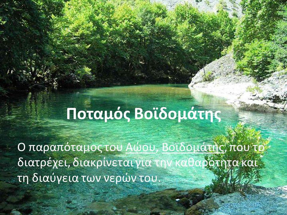 Ποταμός Βοϊδομάτης Ο παραπόταμος του Αώου, Βοϊδομάτης, που το διατρέχει, διακρίνεται για την καθαρότητα και τη διαύγεια των νερών του.