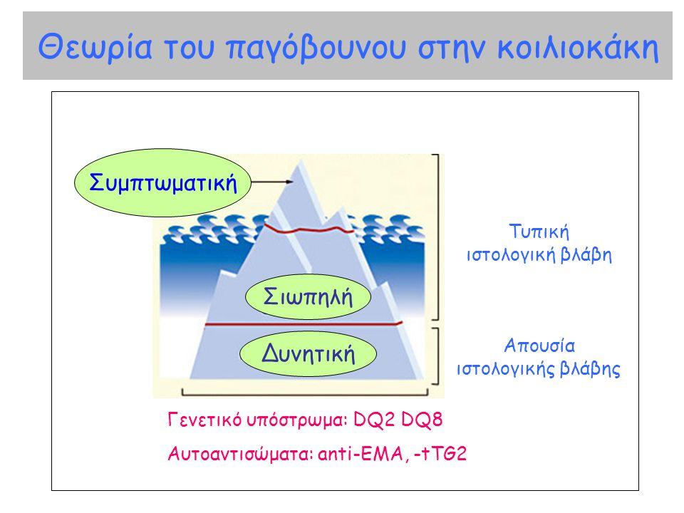 Θεωρία του παγόβουνου στην κοιλιοκάκη Γενετικό υπόστρωμα: DQ2 DQ8 Αυτοαντισώματα: anti-EMA, -tTG2 Απουσία ιστολογικής βλάβης Τυπική ιστολογική βλάβη Σ