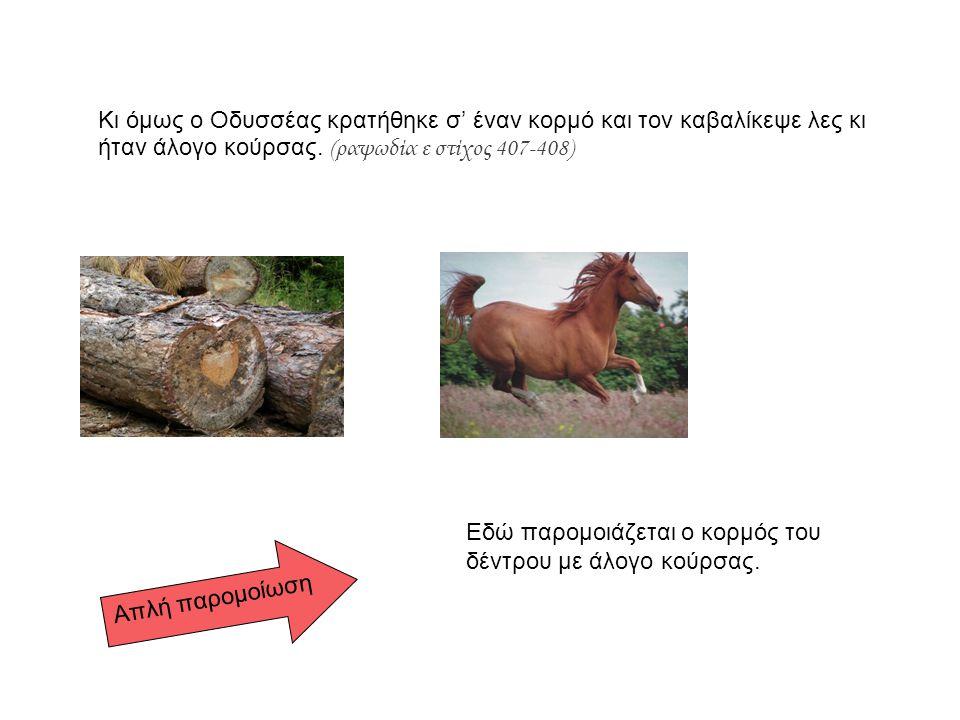 Κι όμως ο Οδυσσέας κρατήθηκε σ' έναν κορμό και τον καβαλίκεψε λες κι ήταν άλογο κούρσας. (ραψωδία ε στίχος 407-408) Εδώ παρομοιάζεται ο κορμός του δέν