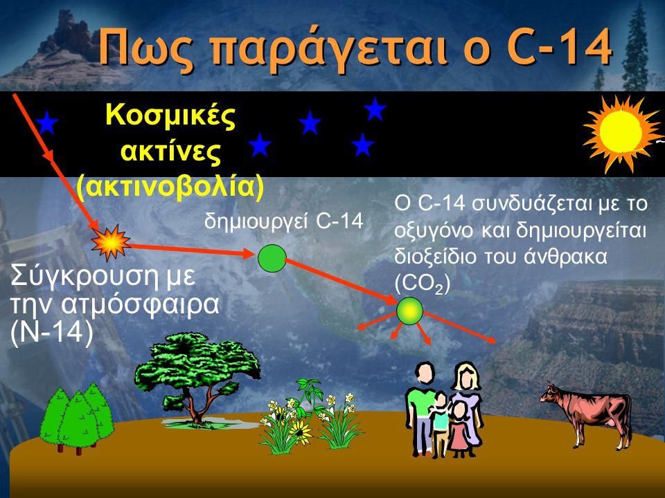 Πως παράγεται ο C-14 Κοσμικές ακτίνες (ακτινοβολία) Σύγκρουση με την ατμόσφαιρα (N-14) δημιουργεί C-14 Ο C-14 συνδυάζεται με το οξυγόνο και δημιουργεί