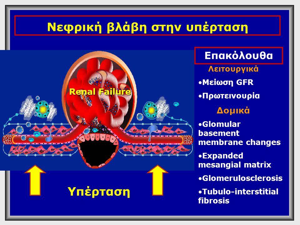 Λειτουργικά •Μείωση GFR •Πρωτεινουρία Δομικά •Glomular basement membrane changes •Expanded mesangial matrix •Glomerulosclerosis •Tubulo-interstitial f