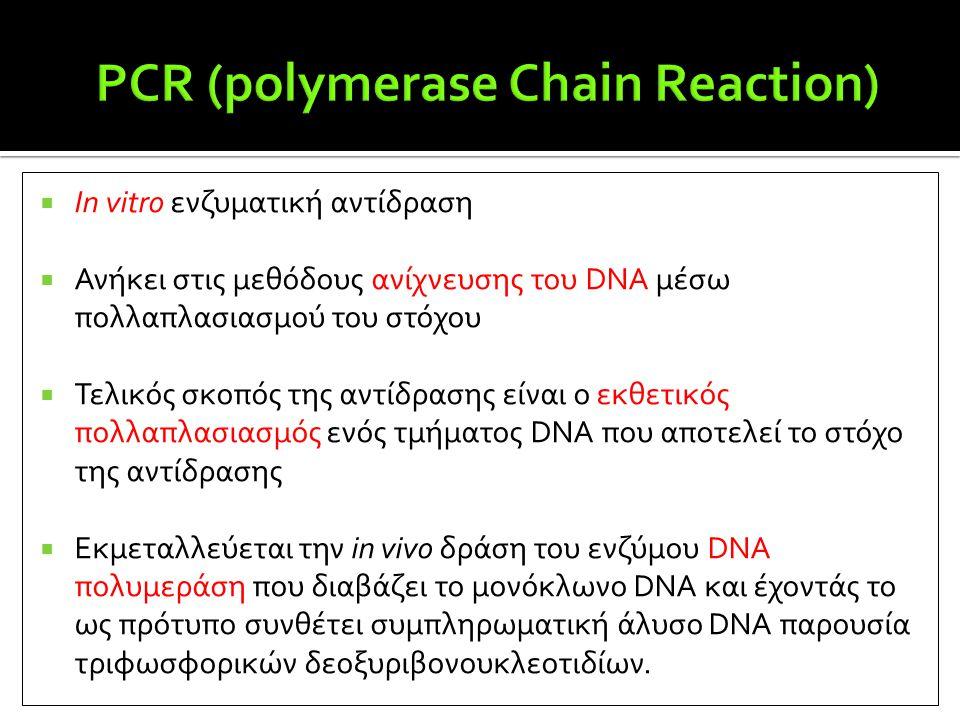  In vitro ενζυματική αντίδραση  Ανήκει στις μεθόδους ανίχνευσης του DNA μέσω πολλαπλασιασμού του στόχου  Τελικός σκοπός της αντίδρασης είναι ο εκθε