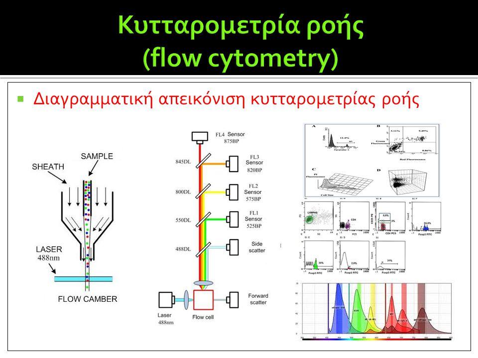  Διαγραμματική απεικόνιση κυτταρομετρίας ροής