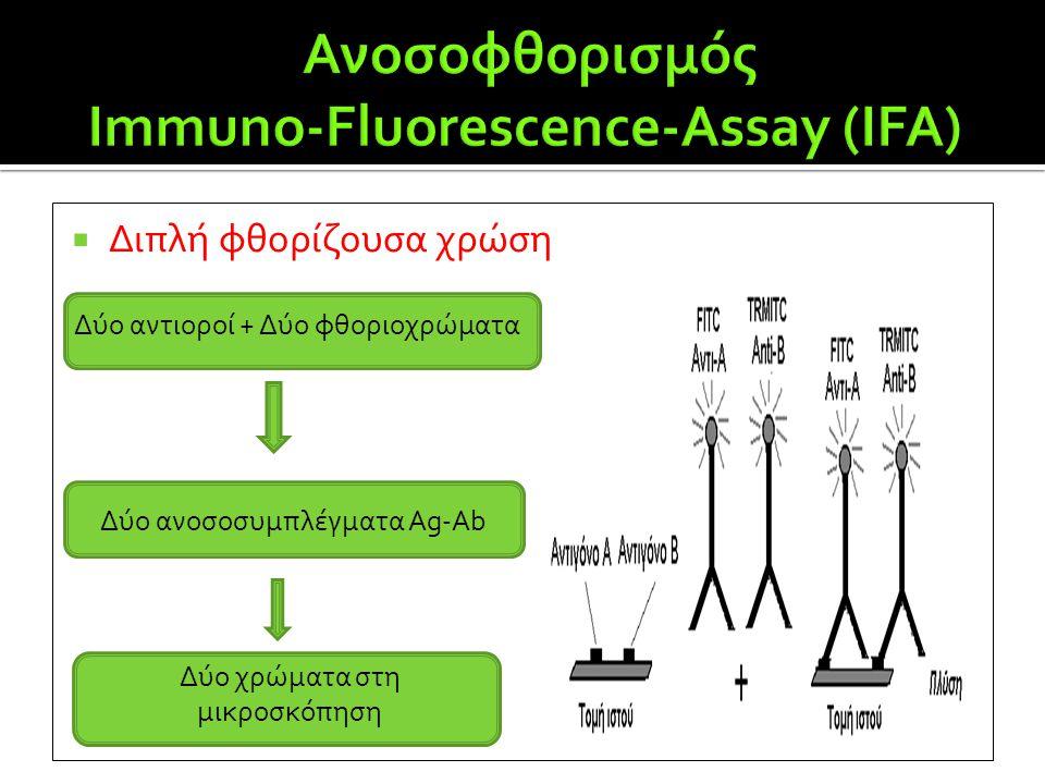  Διπλή φθορίζουσα χρώση Δύο αντιοροί + Δύο φθοριοχρώματα Δύο ανοσοσυμπλέγματα Ag-Ab Δύο χρώματα στη μικροσκόπηση