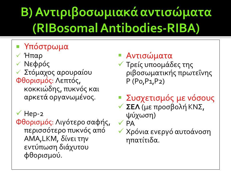  Υπόστρωμα  Ήπαρ  Νεφρός  Στόμαχος αρουραίου Φθορισμός: Λεπτός, κοκκιώδης, πυκνός και αρκετά οργανωμένος.  Hep-2 Φθορισμός: Λιγότερο σαφής, περισ