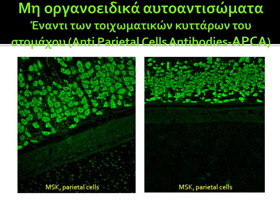 MSK, parietal cells