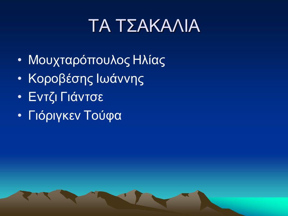 ΤΑ ΤΣΑΚΑΛΙΑ •Μουχταρόπουλος Ηλίας •Κοροβέσης Ιωάννης •Εντζι Γιάντσε •Γιόριγκεν Τούφα