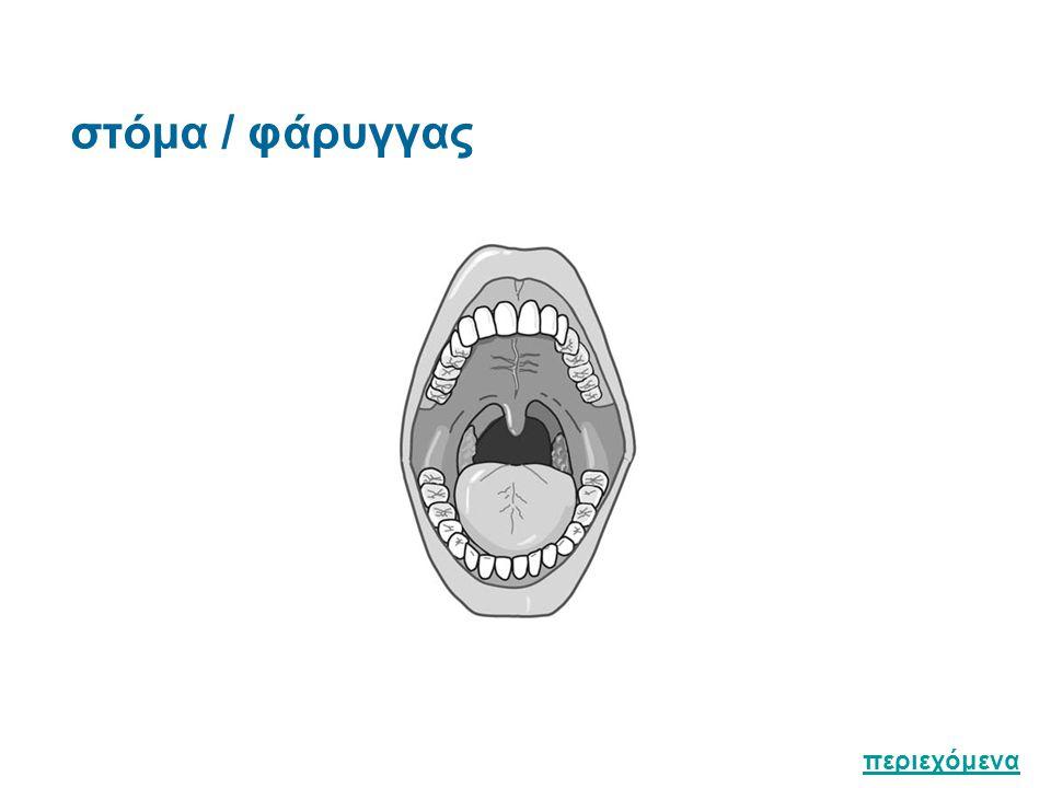 Επισκόπηση : με σπάτουλα / φακό Χείλη Χροιά ( αναιμία / κυάνωση ) / ξηρότης / ραγάδες / γωνιακή χειλίτις / έρπης / κηλίδες Βλεννογόνος στόματος (παρειακός και υπογλώσσιος) Κηλίδες / εξελκώσεις / εξανθήματα / στοματίτις Δόντια Τερηδόνα / οδοντοστοιχία Ούλα Φλεγμονή / υπερτροφία / αιμορραγία Γλώσσα Μέγεθος / χρώμα / ξηρότης / επιφάνεια λεία ή όχι / επίχρισμα / έλκη / λευκοπλακία Υπερώα (σκληρή και μαλακή) Βλεννογόνος / θέση σταφυλής Αισθητικότης γλώσσας και υπερώας Στα δύο πρόσθια τριτημόρια υπεύθυνο για την γεύση και την αισθητικότητα είναι το προσωπικό νεύρο ( VΙΙ ) Στο οπίσθιο τριτημόριο,υπεύθυνο το γλωσσοφαρυγγικό ( ΙΧ ) περιεχόμενα