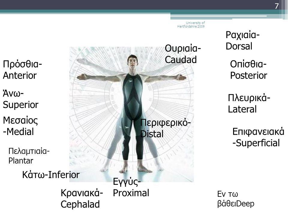 7 Άνω- Superior Πρόσθια- Anterior Μεσαίος -Medial Εν τω βάθειDeep Εγγύς- Proximal Κρανιακά- Cephalad Ραχιαία- Dorsal Κάτω-Inferior Οπίσθια- Posterior
