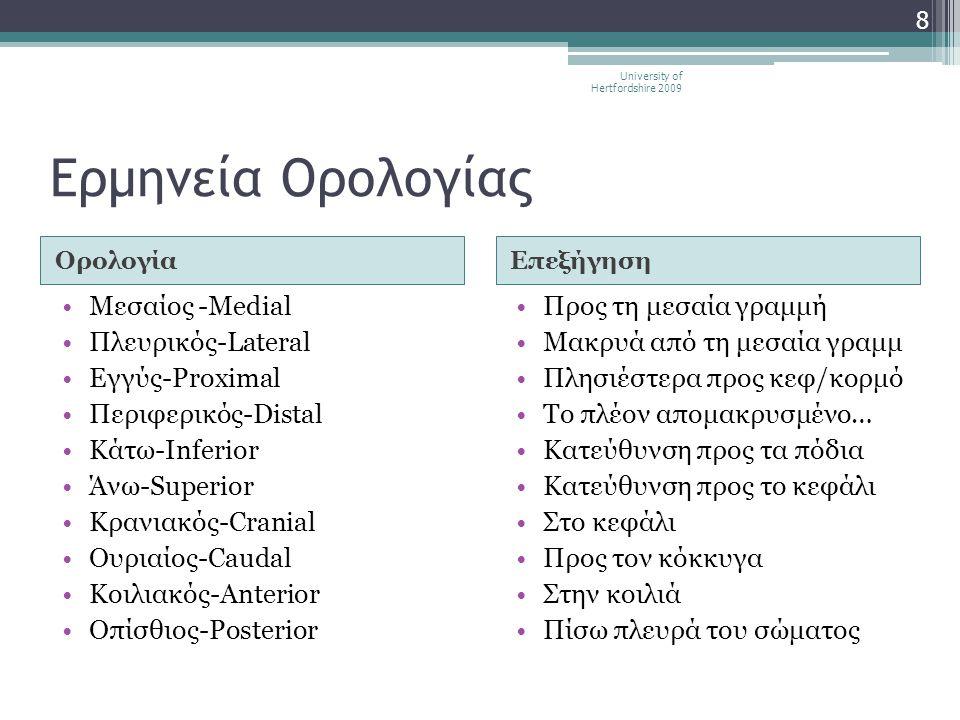 Ερμηνεία Ορολογίας ΟρολογίαΕπεξήγηση •Μεσαίος -Medial •Πλευρικός-Lateral •Εγγύς-Proximal •Περιφερικός-Distal •Κάτω-Inferior •Άνω-Superior •Κρανιακός-C