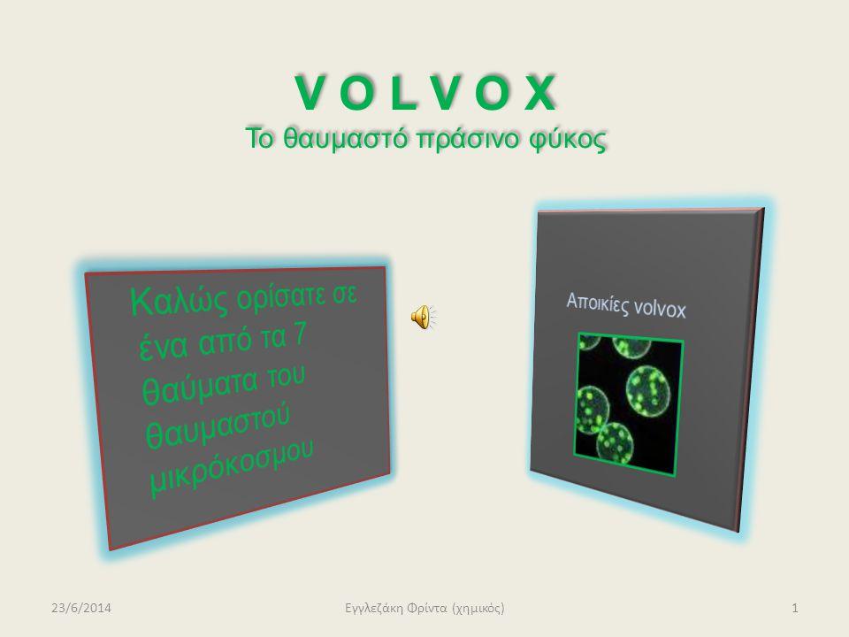 Το volvox, η spirogyra η spirogyraκαι η χλαμυδομονάδα ανήκουν στα πράσινα φύκια.