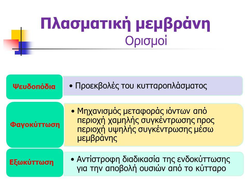 Πλασματική μεμβράνη Ορισμοί •Προεκβολές του κυτταροπλάσματος Ψευδοπόδια •Μηχανισμός μεταφοράς ιόντων από περιοχή χαμηλής συγκέντρωσης προς περιοχή υψηλής συγκέντρωσης μέσω μεμβράνης Φαγοκύττωση •Αντίστροφη διαδικασία της ενδοκύττωσης για την αποβολή ουσιών από το κύτταρο Εξωκύττωση