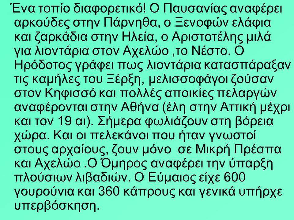 Ο Πλάτων θρηνούσε τη χαμένη ομορφιά του αττικού τοπίου που στα χρόνια της Ατλαντίδας,9000 χρόνια πριν από την εποχή του ήταν ομορφότερη από οπουδήποτε