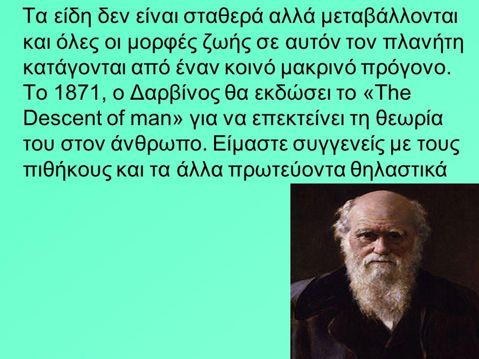 ΤΟΙΧΟΓΡΑΦΙΑ ΤΗΣ ΑΝΟΙΞΗΣ -ΘΗΡΑ στην Ελλάδα