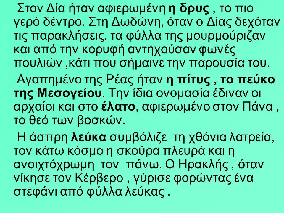 ΠΛΑΤΑΝΙ