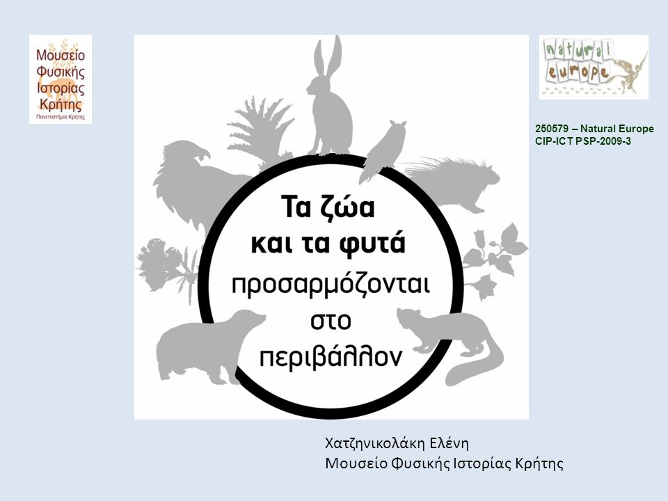 Χατζηνικολάκη Ελένη Μουσείο Φυσικής Ιστορίας Κρήτης 250579 – Natural Europe CIP-ICT PSP-2009-3