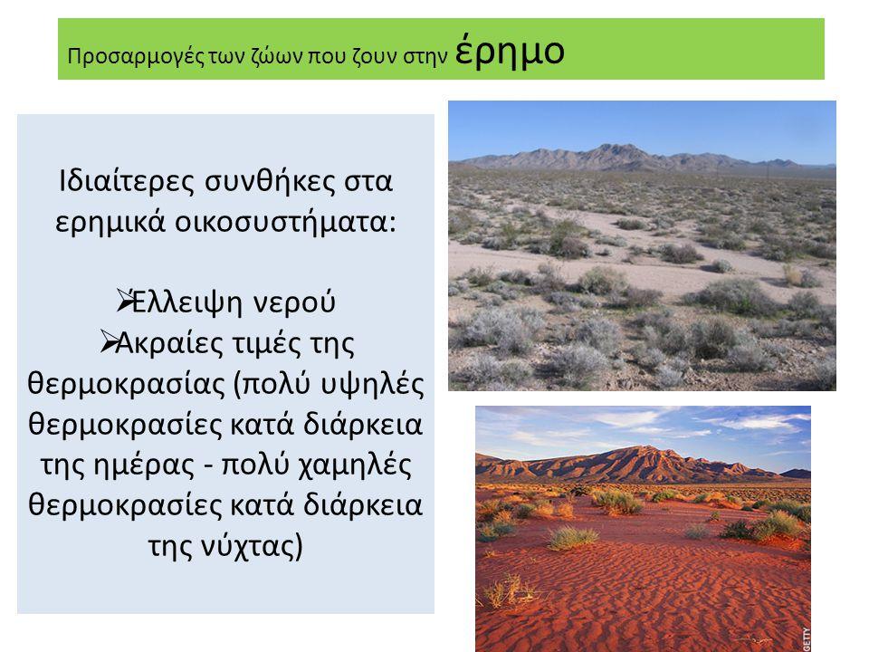 Προσαρμογές των ζώων που ζουν στην έρημο Ιδιαίτερες συνθήκες στα ερημικά οικοσυστήματα:  Έλλειψη νερού  Ακραίες τιμές της θερμοκρασίας (πολύ υψηλές θερμοκρασίες κατά διάρκεια της ημέρας - πολύ χαμηλές θερμοκρασίες κατά διάρκεια της νύχτας)
