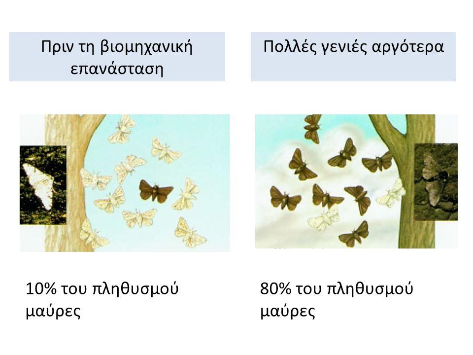 Πριν τη βιομηχανική επανάσταση Πολλές γενιές αργότερα Οι κορμοί των δέντρων είχαν το φυσικό ανοιχτό χρώμα.