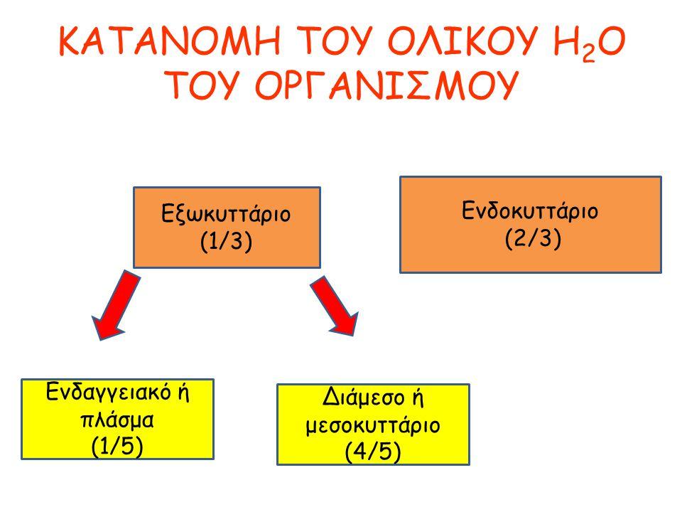 KATANOMH TOY ΟΛΙΚΟΥ H 2 O ΤΟΥ ΟΡΓΑΝΙΣΜΟΥ Εξωκυττάριο (1/3) Ενδοκυττάριο (2/3) Ενδαγγειακό ή πλάσμα (1/5) Διάμεσο ή μεσοκυττάριο (4/5)