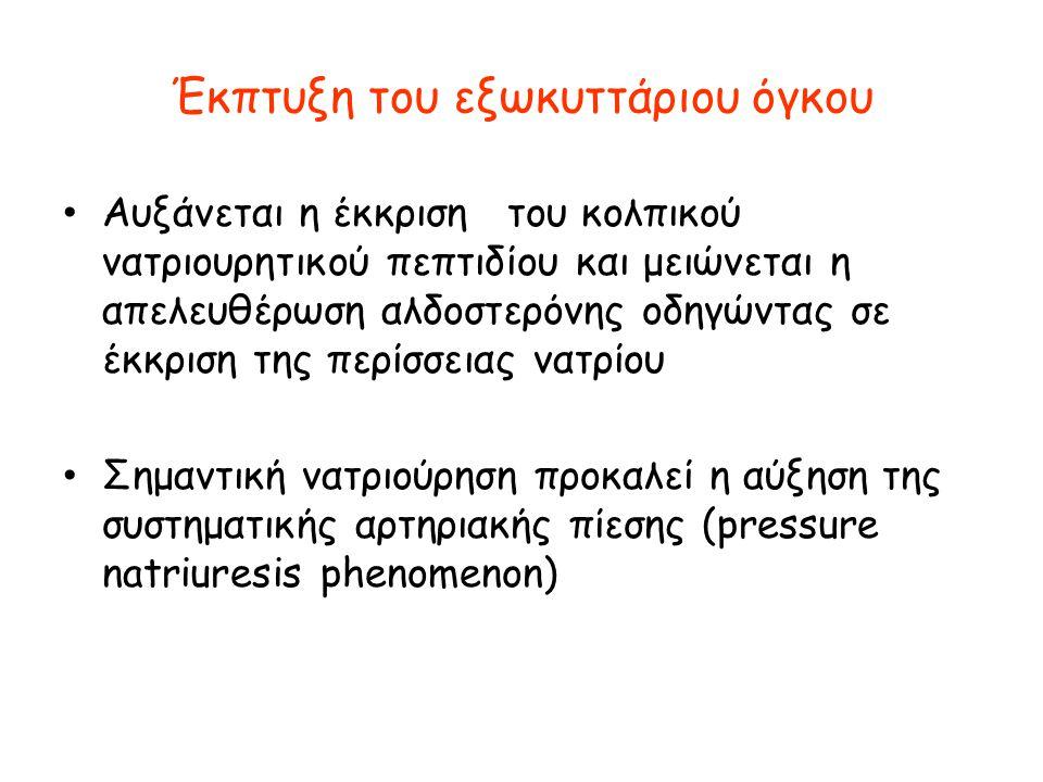 Έκπτυξη του εξωκυττάριου όγκου • Αυξάνεται η έκκριση του κολπικού νατριουρητικού πεπτιδίου και μειώνεται η απελευθέρωση αλδοστερόνης οδηγώντας σε έκκρ