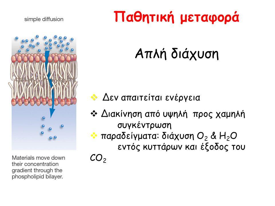 Παθητική μεταφορά Απλή διάχυση   Δεν απαιτείται ενέργεια  Διακίνηση από υψηλή προς χαμηλή συγκέντρωση  παραδείγματα: διάχυση Ο 2 & Η 2 Ο εντός κυτ