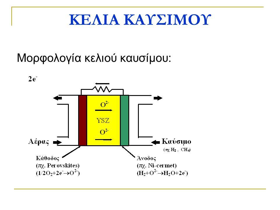 Μορφολογία κελιού καυσίμου: