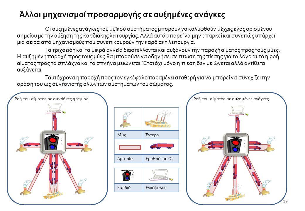 Άλλοι μηχανισμοί προσαρμογής σε αυξημένες ανάγκες Οι αυξημένες ανάγκες του μυϊκού συστήματος μπορούν να καλυφθούν μέχρις ενός ορισμένου σημείου με την