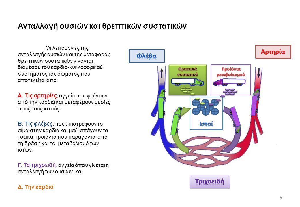 Ανταλλαγή ουσιών και θρεπτικών συστατικών Οι λειτουργίες της ανταλλαγής ουσιών και της μεταφοράς θρεπτικών συστατικών γίνονται διαμέσου του κάρδιο-κυκ