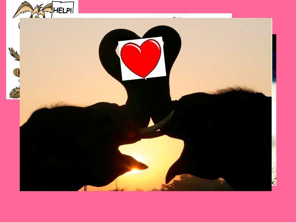 … τόσο σημαντική που έγινε σύμβολο της αγάπης!! …ΚΑΡΔΙΑ…