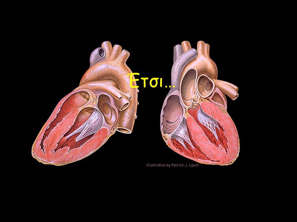 Από το κάτω μέρος του σώματος Οξυγονωμένο αίμα Μη οξυγονωμένο αίμα Προς τους πνεύμονες Από τους πνεύμονες Προς τους πνεύμονες Από τους πνεύμονες Από το πάνω μέρος του σώματοςΠρος το σώμα ΔΕΞΙΟΣ ΚΟΛΠΟΣ ΑΡΙΣΤΕΡΟΣ ΚΟΛΠΟΣ ΔΕΞΙΑ ΚΟΙΛΙΑ ΑΡΙΣΤΕΡΗ ΚΟΙΛΙΑ ΑΟΡΤΗ ΠΝΕΥΜΟΝΙΚΗ ΑΡΤΗΡΙΑ