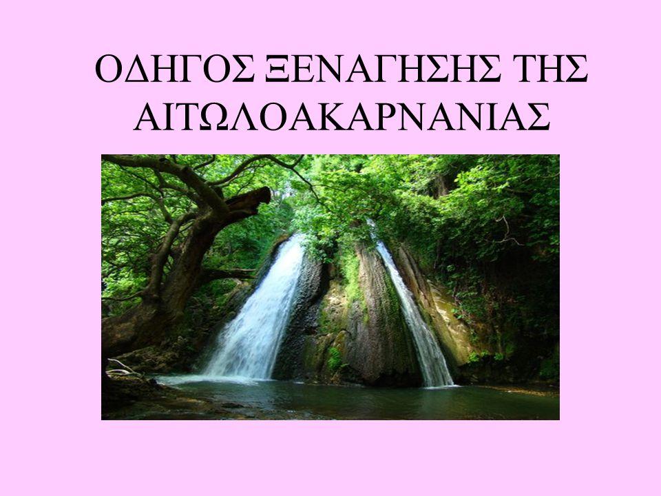 ΟΔΗΓΟΣ ΞΕΝΑΓΗΣΗΣ ΤΗΣ ΑΙΤΩΛΟΑΚΑΡΝΑΝΙΑΣ
