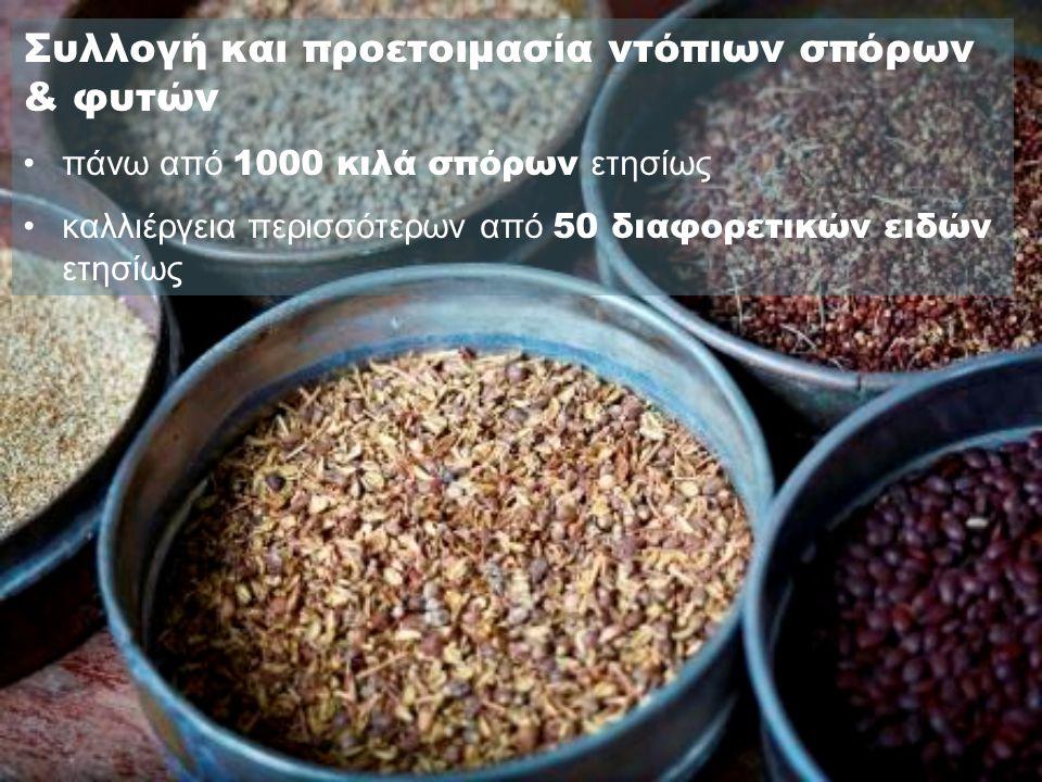 Συλλογή και προετοιμασία ντόπιων σπόρων & φυτών •πάνω από 1000 κιλά σπόρων ετησίως •καλλιέργεια περισσότερων από 50 διαφορετικών ειδών ετησίως
