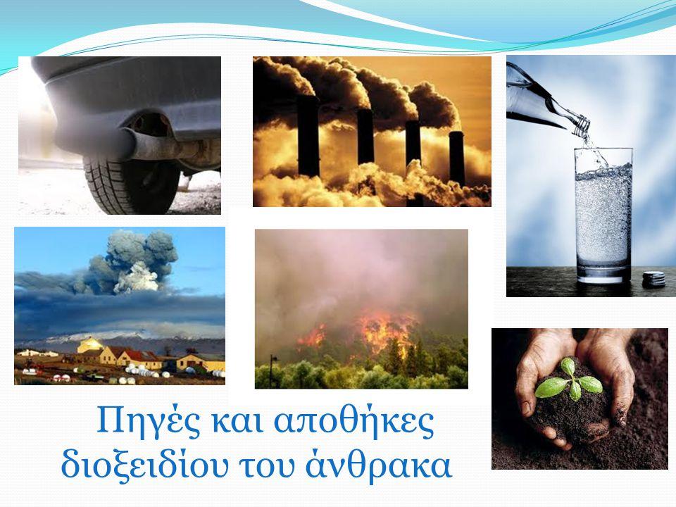 Πηγές και αποθήκες διοξειδίου του άνθρακα