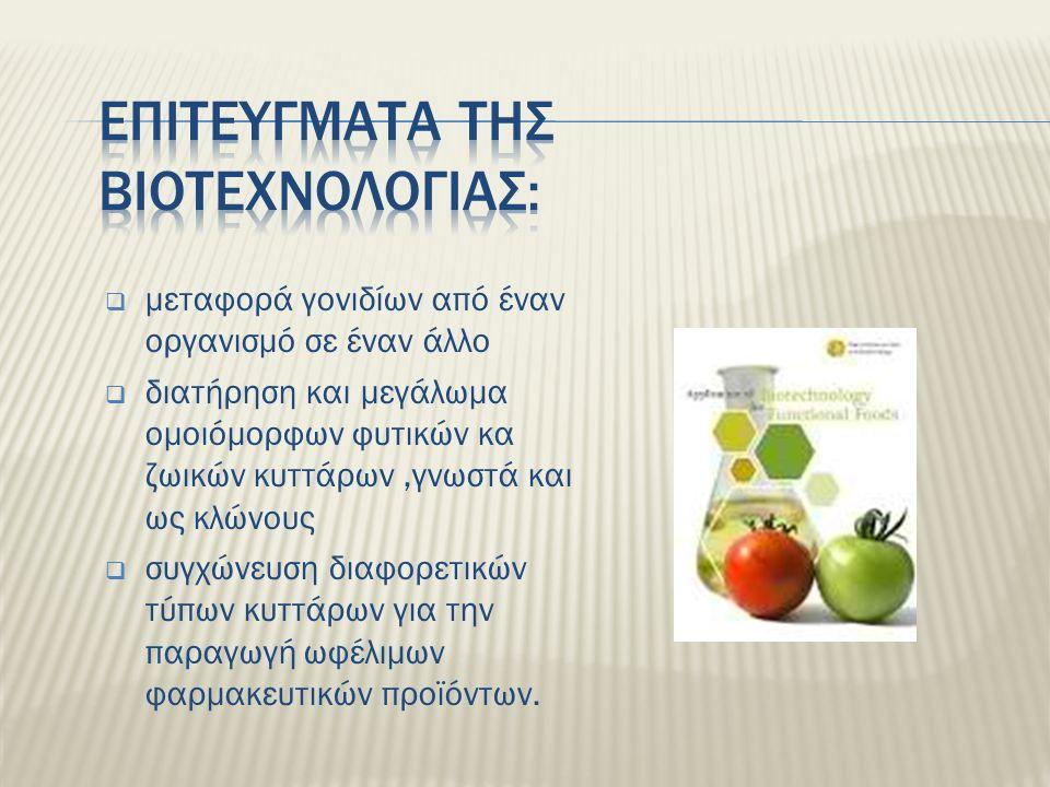 Ο όρος 'βιοτεχνολογία' εμφανίζεται γύρω στο 1917, όταν χρησιμοποιήθηκε για πρώτη φορά από τον Ούγγρο Kark Ereky για την αναφορά ευρείας κλίμακας παραγωγής προϊόντων από μικροβιακές καλλιέργειες που αναπτύσσονταν σε μεγάλες ειδικές δεξαμενές.