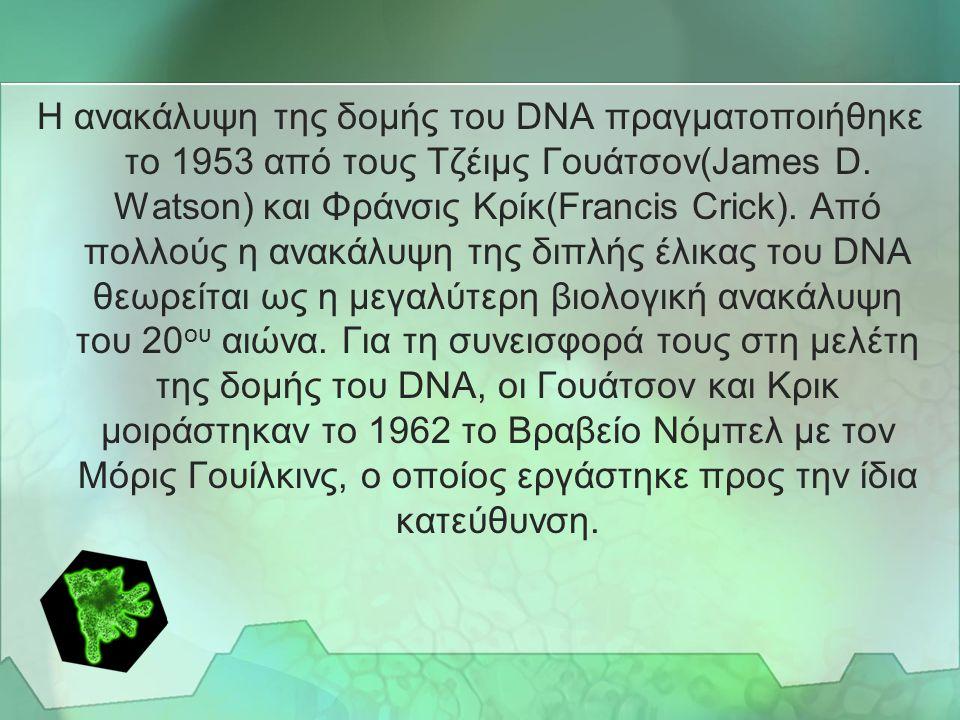 ΓΕΝΙΚΑ •Η αποκωδικοποίηση του DNA, η αποσαφήνιση δηλαδή του τρόπου με τον οποίο η δομή του DNA καθορίζει συγκεκριμένες γενετικές επιλογές, επέτρεψε στ