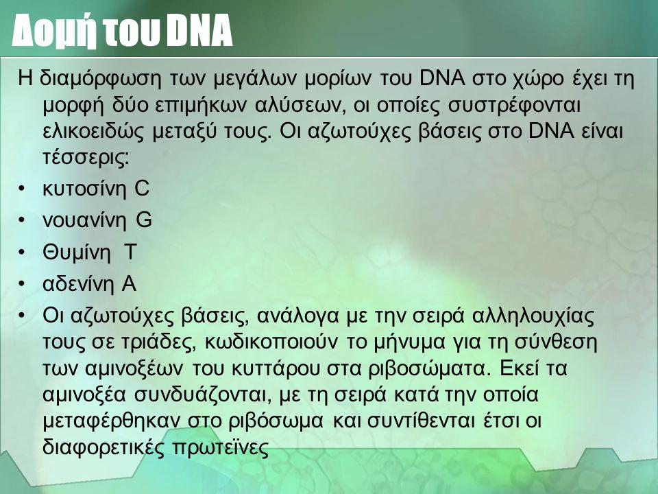 Το σύνολο των μορίων DNA που υπάρχουν σε ένα κύτταρο αποτελούν το γενετικό υλικό του. To DNA είναι ο φορέας των γενετικών πληροφοριών του κυττάρου, όχ