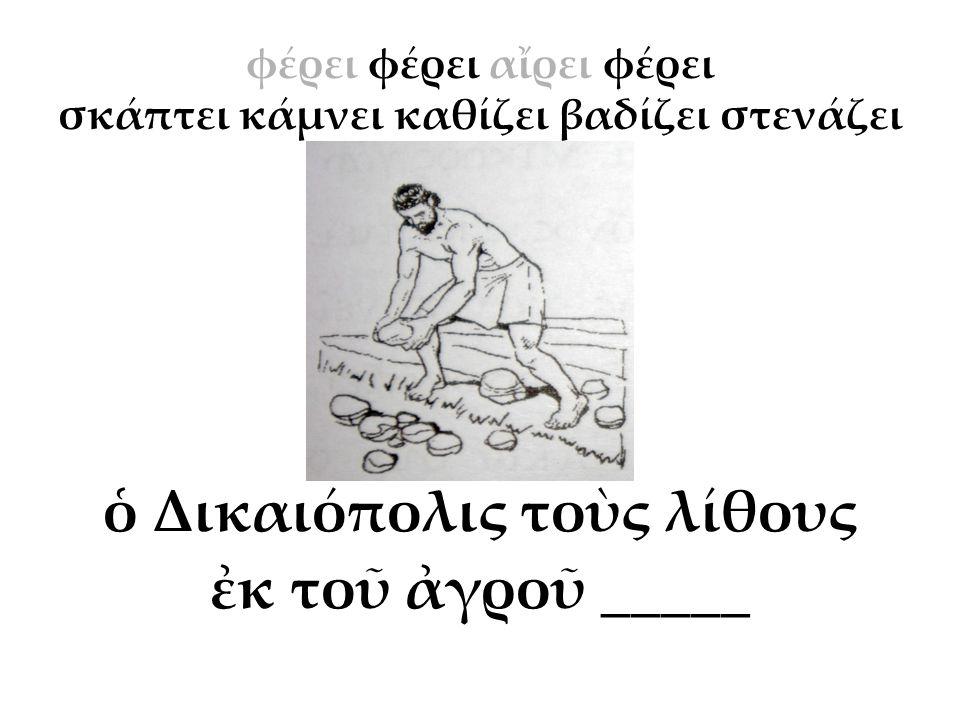 ὁ Δικαιόπολις τοὺς λίθους ἐκ τοῦ ἀγροῦ _____