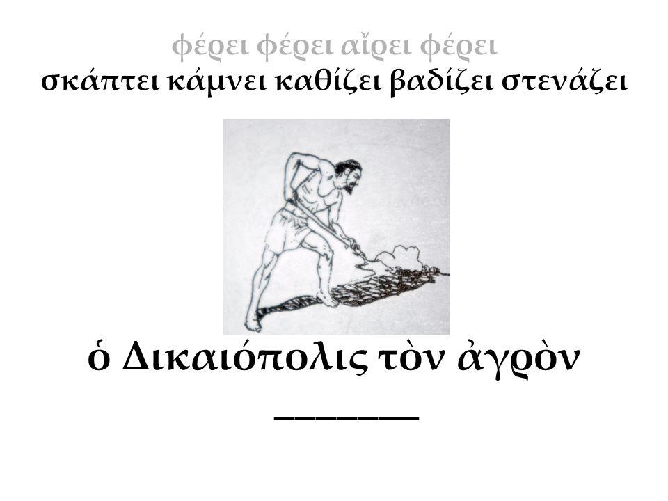 ὁ Δικαιόπολις τὸν ἀγρὸν _______