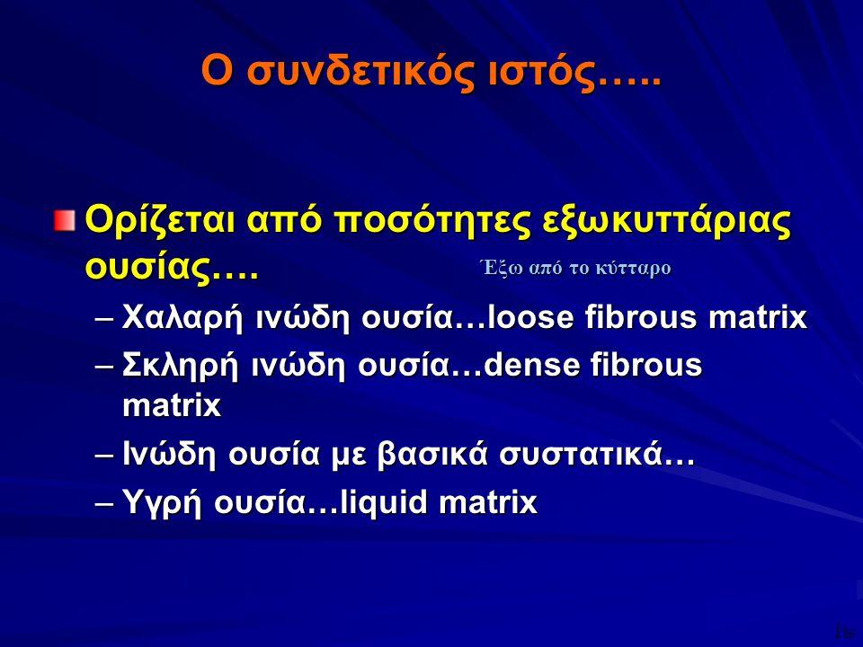 Ο συνδετικός ιστός….. Ορίζεται από ποσότητες εξωκυττάριας ουσίας…. –Χαλαρή ινώδη ουσία…loose fibrous matrix –Σκληρή ινώδη ουσία…dense fibrous matrix –