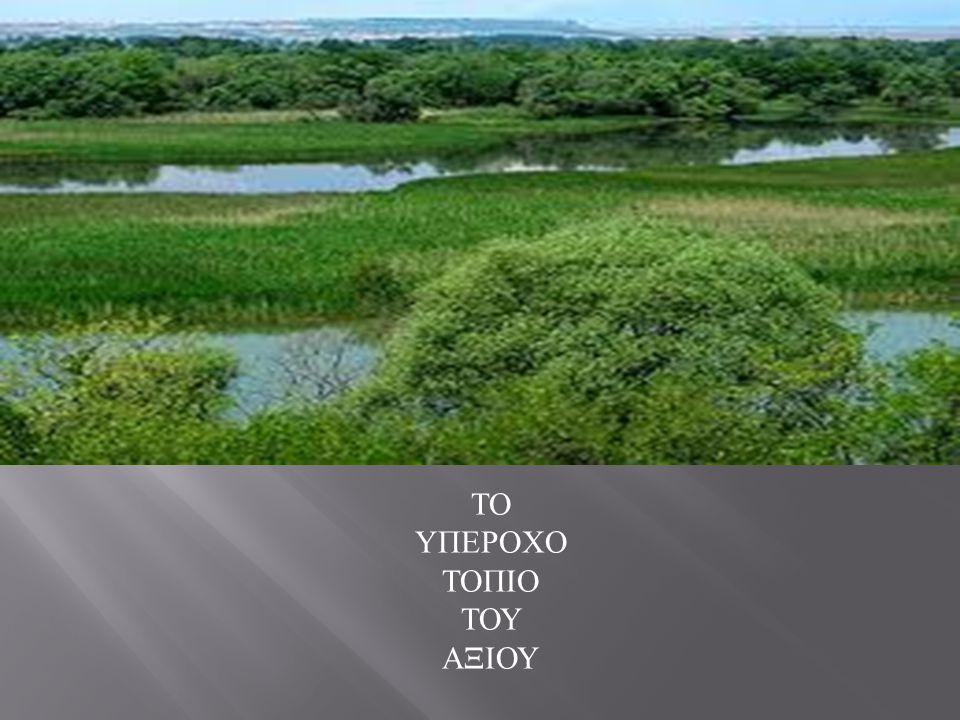 Δυτικά της κοιλάδας του Αξιού βρίσκεται το Πάικο, με κορυφή γύρω στα 1600 μ., που αποτελεί μια από τις καλύτερες τοποθεσίες για να παρατηρήσει κανείς τη ροή του ποταμού από ψηλά.