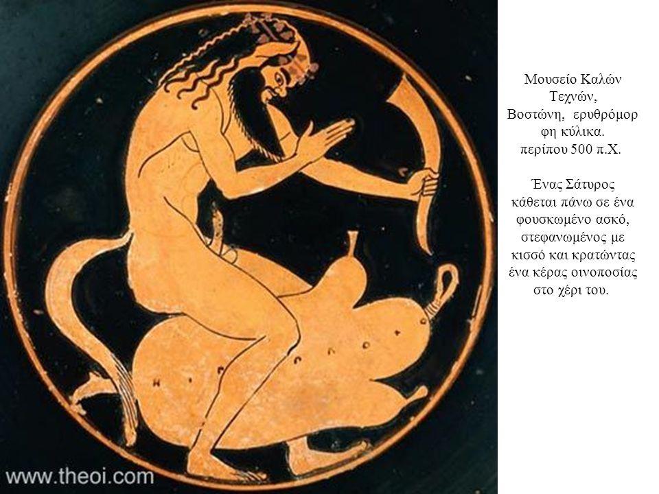 Μουσείο Καλών Τεχνών, Βοστώνη, ερυθρόμορ φη κύλικα. περίπου 500 π.Χ. Ένας Σάτυρος κάθεται πάνω σε ένα φουσκωμένο ασκό, στεφανωμένος με κισσό και κρατώ