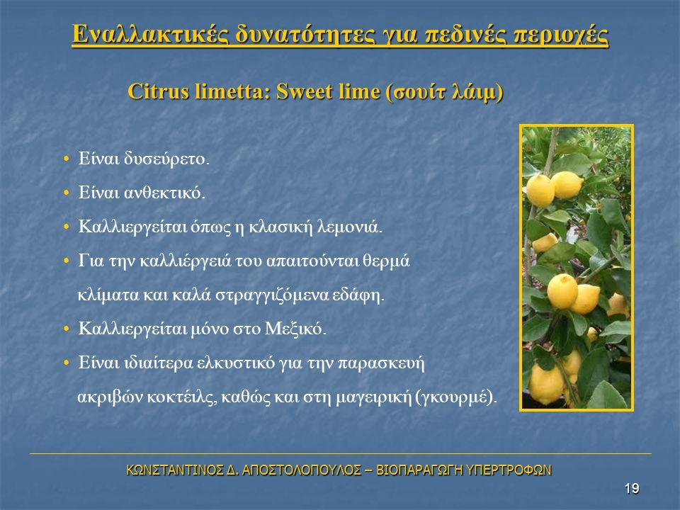 19 Citrus limetta: Sweet lime (σουίτ λάιμ) • Είναι δυσεύρετο. • Είναι ανθεκτικό. • Καλλιεργείται όπως η κλασική λεμονιά. • Για την καλλιέργειά του απα