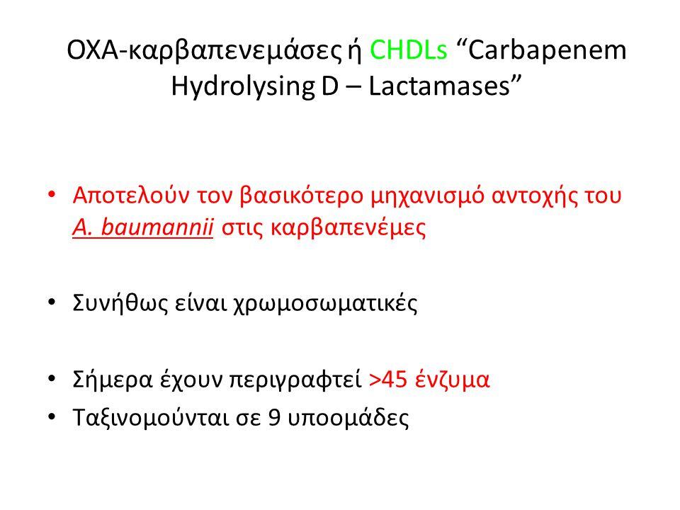 ΟΧΑ-καρβαπενεμάσες ή CHDLs Carbapenem Hydrolysing D – Lactamases • Αποτελούν τον βασικότερο μηχανισμό αντοχής του A.