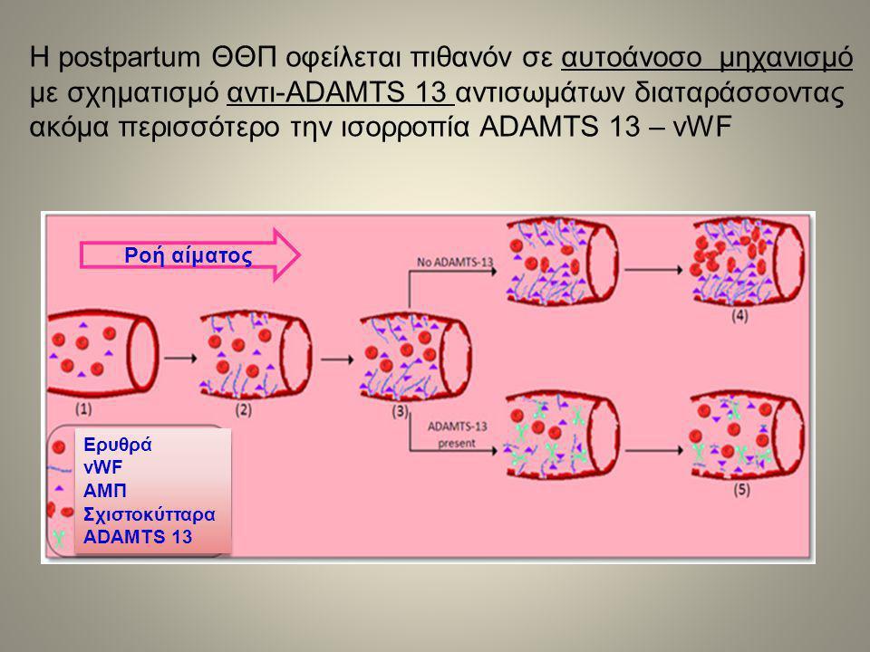 Η postpartum ΘΘΠ οφείλεται πιθανόν σε αυτοάνοσο μηχανισμό με σχηματισμό αντι-ADAMTS 13 αντισωμάτων διαταράσσοντας ακόμα περισσότερο την ισορροπία ADAMTS 13 – vWF Ερυθρά vWF ΑΜΠ Σχιστοκύτταρα ADAMTS 13 Ερυθρά vWF ΑΜΠ Σχιστοκύτταρα ADAMTS 13 Ροή αίματος